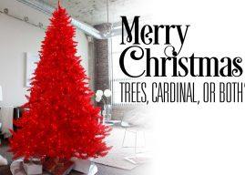 The KillerFrogs S04E17 – Tree or Cardinal?